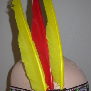Native American headband