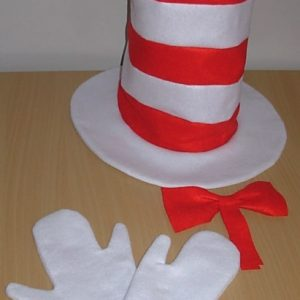 Cat in the hat style dress up set