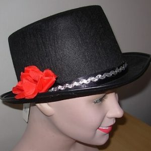 3a05ee26947 Hats – Scalliwags Costume Hire