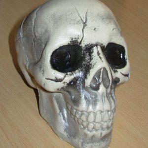Small plastic skull