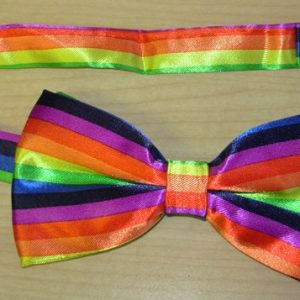 Multi-coloured bowtie