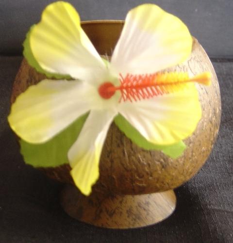Plastic coconut cup