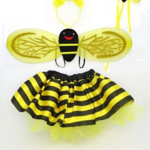 Bee dress up kit