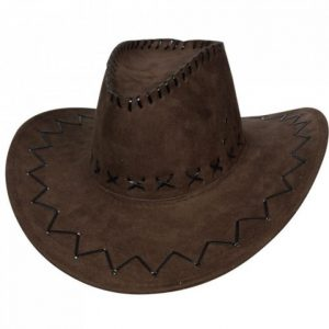 Dark brown cowboy hat