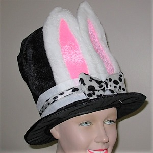 Top hat with rabbit ears