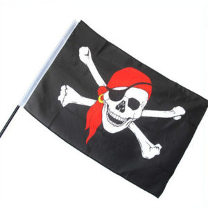 Pirate flag with pole