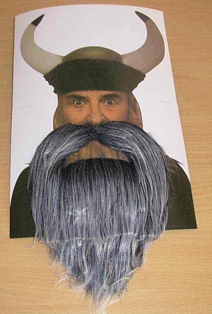 Grey stick on beard