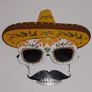 Day of the Dead style sunglasses