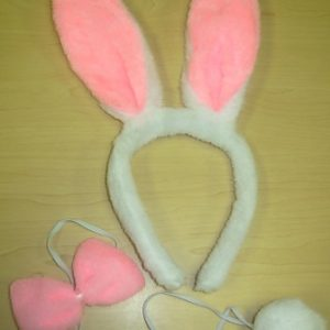 Furry rabbit ear set