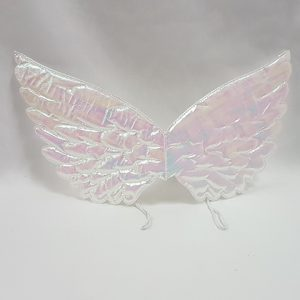 Mother of pearl angel wings