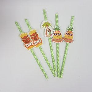 Hawaiian themed straws