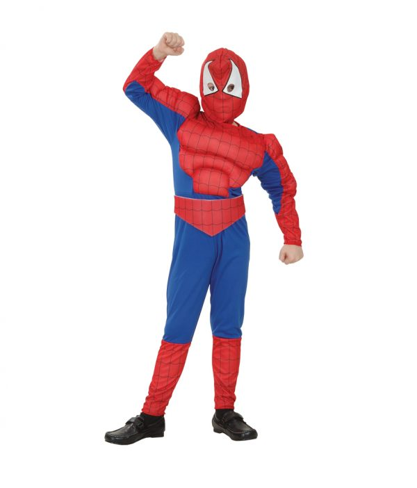 Spider Hero costume