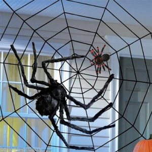 GIant black string spider web