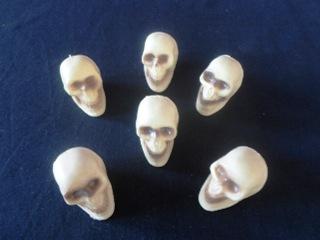 Pack of small skulls