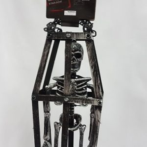 Skeleton in a cage