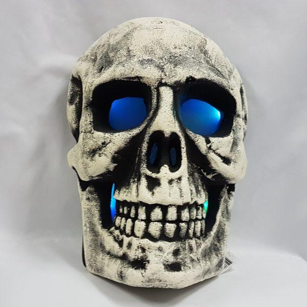 Talking light up skull