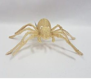 Skeleton spider light up