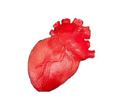 Fake bloody heart