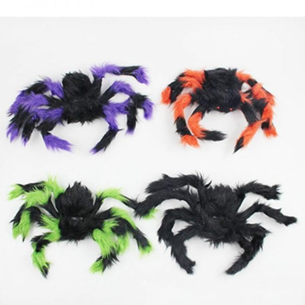 Hairy assorted spiders