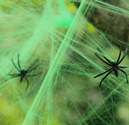 Green spider web