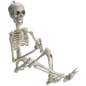 Skeleton 1 meter length