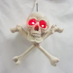 Skull & cossbones light up
