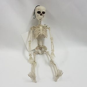 Small hanging skeleton