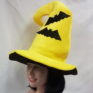 witch hat with bats