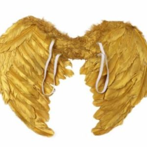 Gold feather wings
