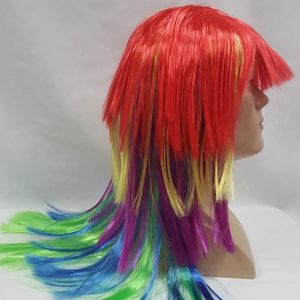 Rainbow coloured wig